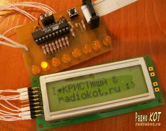 Цифровые устройства.  Лаборатория.  РадиоКот.